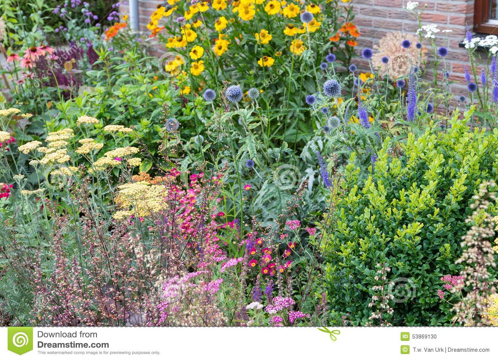 Haus Hat Vorgarten Mit Einigen Blühenden Pflanzen Stockfoto - Bild ...