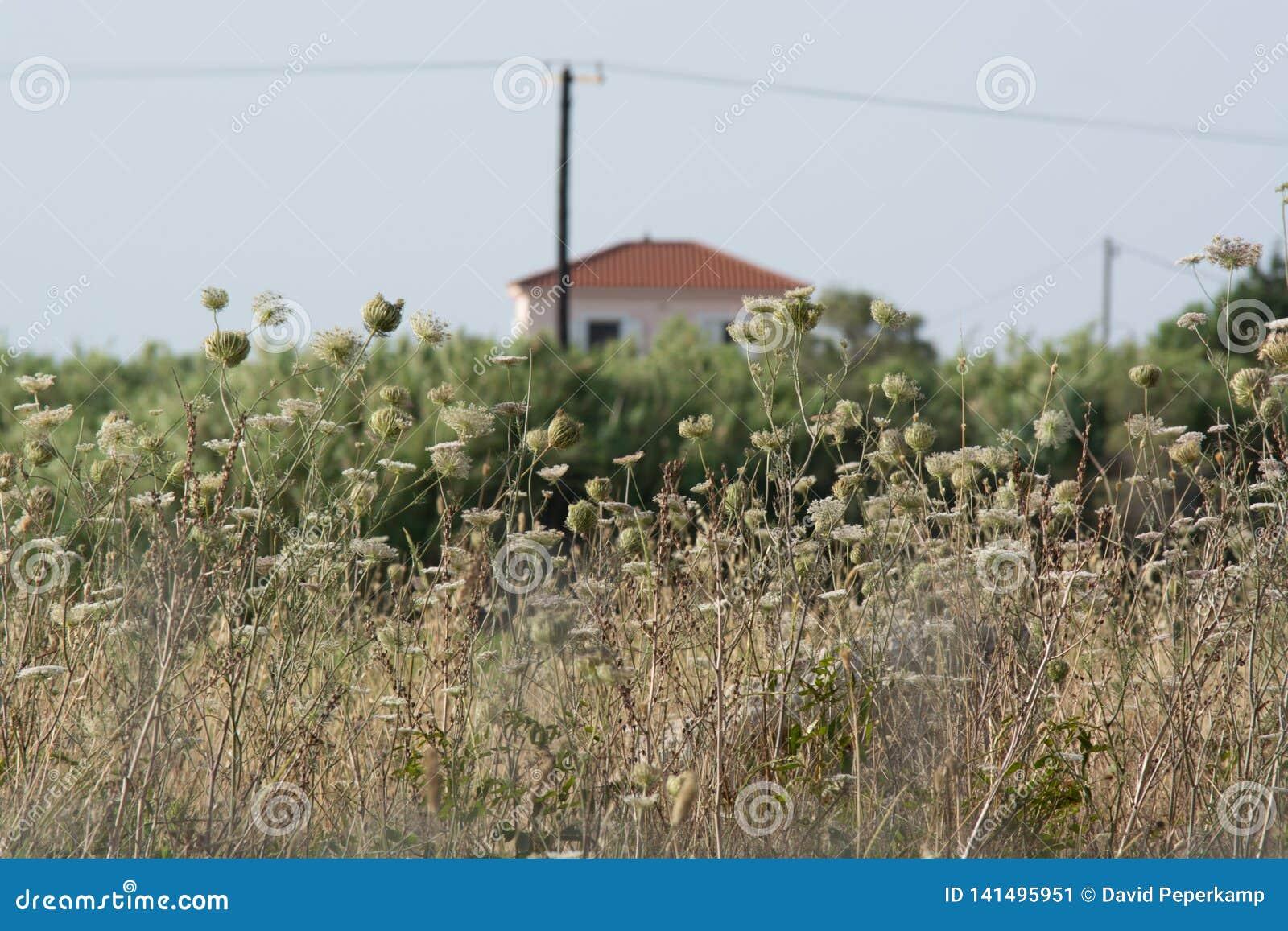 Haus Kefalonia Griechenland