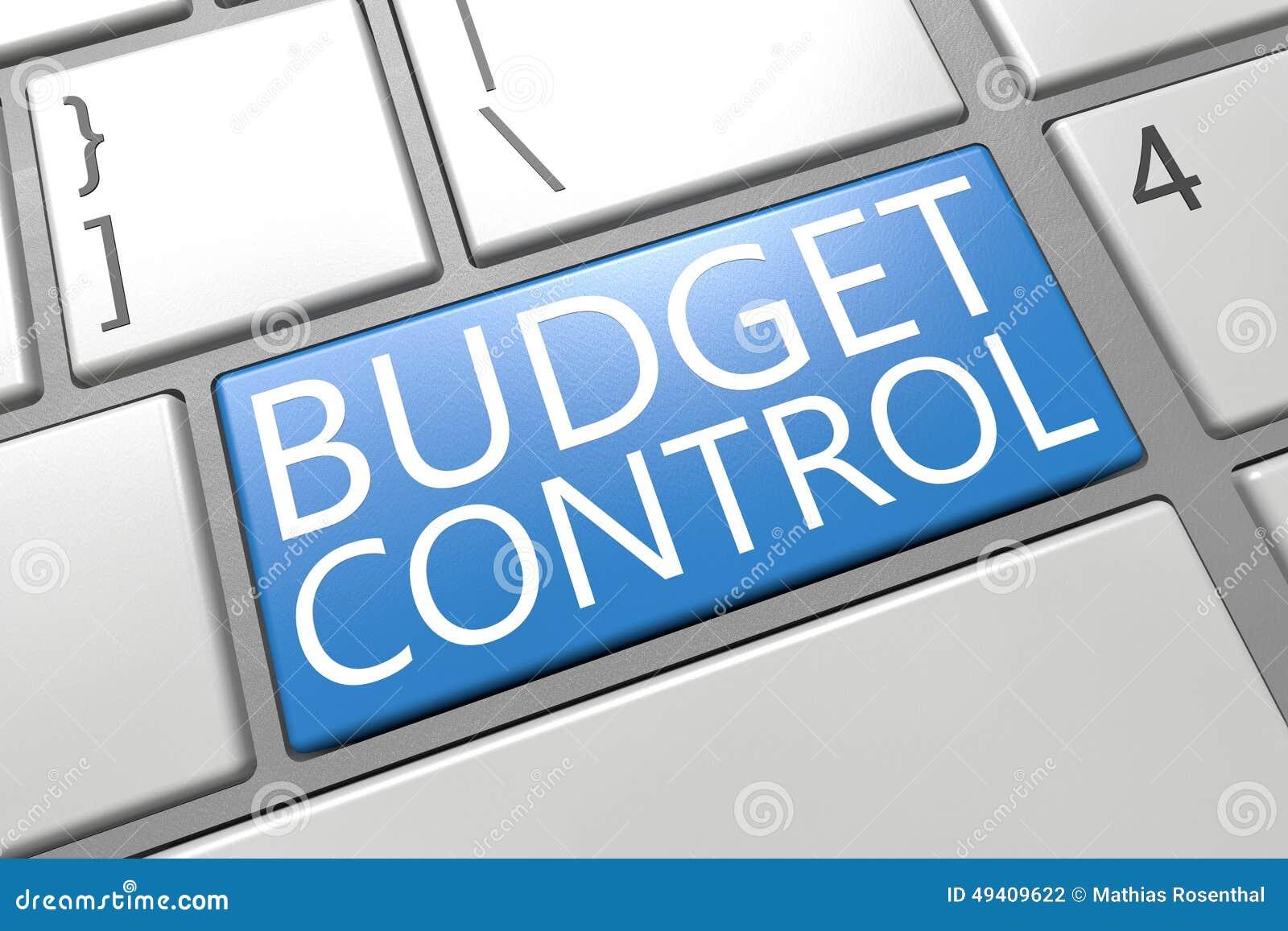 Download Haushaltskontrolle stock abbildung. Illustration von unkosten - 49409622
