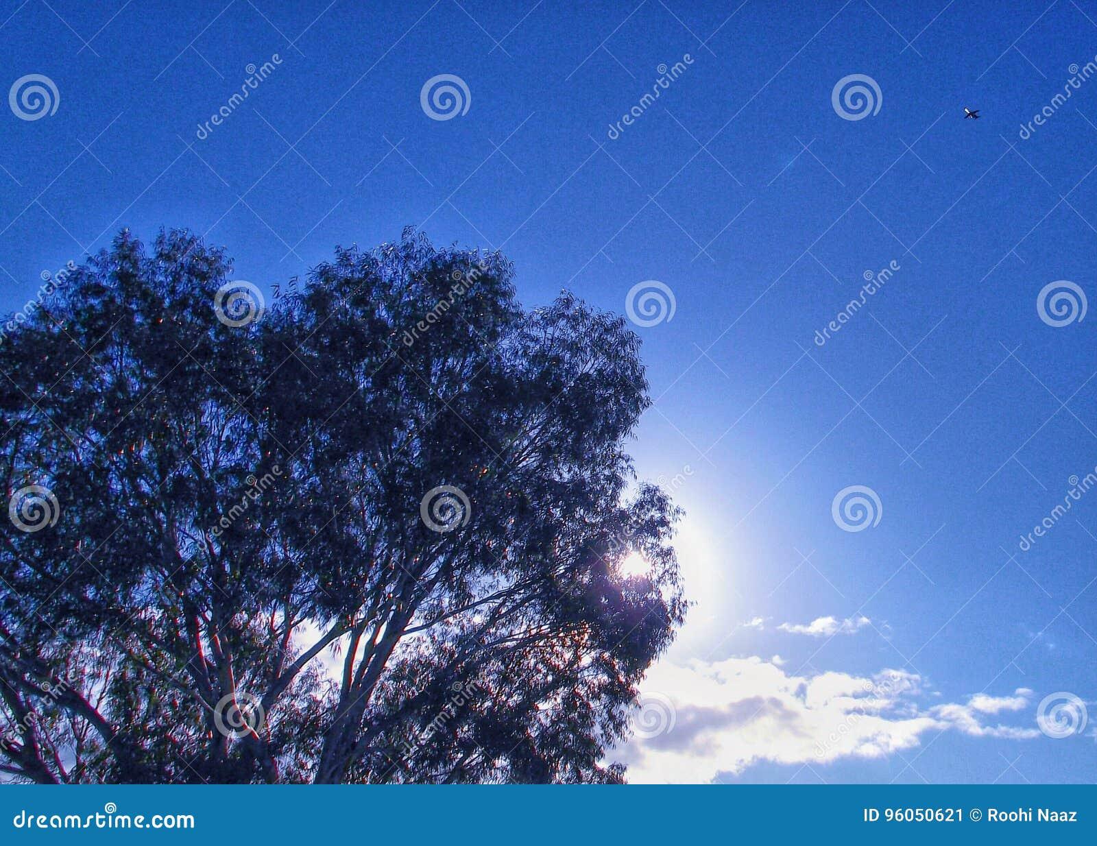 Hausse de Sun