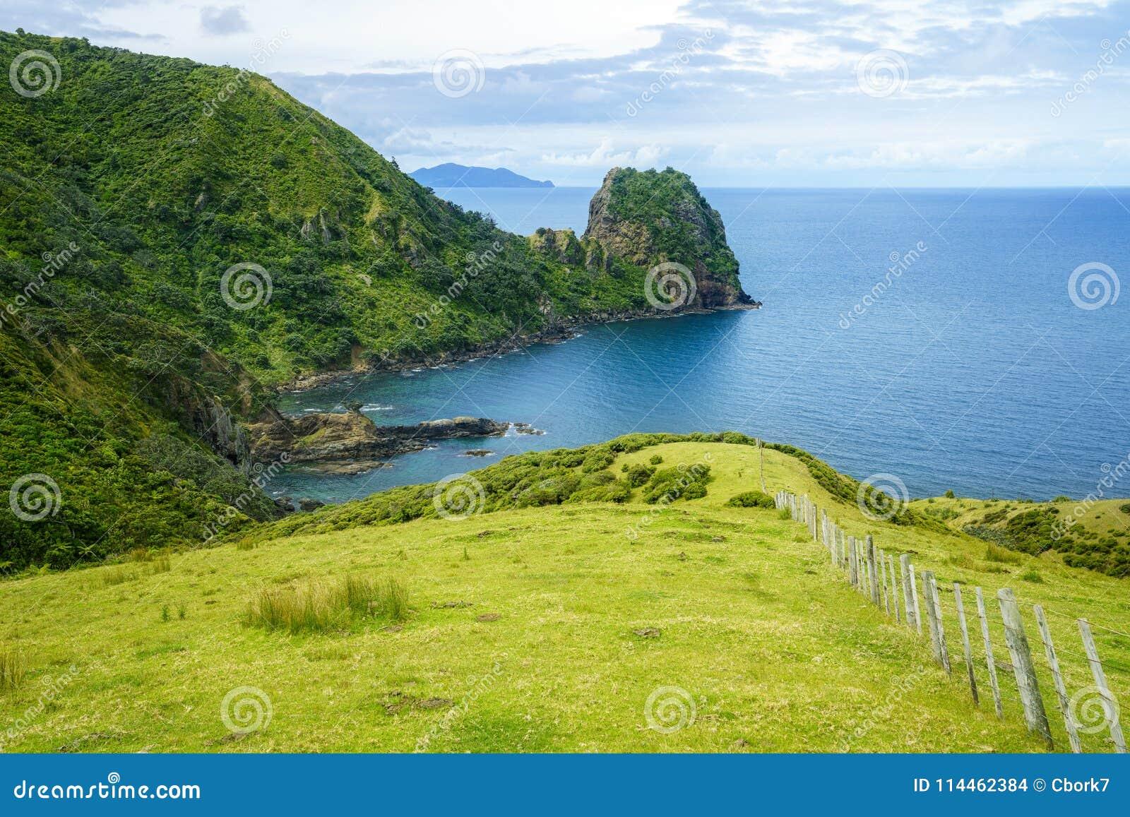 Hausse du passage couvert côtier de Coromandel, le Nouvelle-Zélande 58