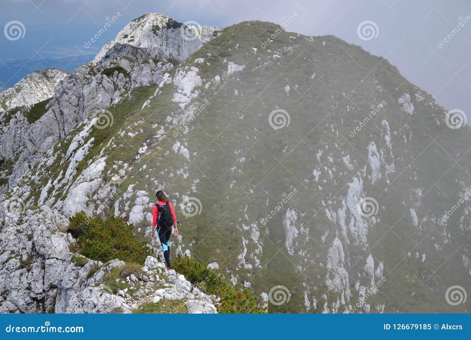 Hausse sur Ridge Of Piatra Craiului Mountain