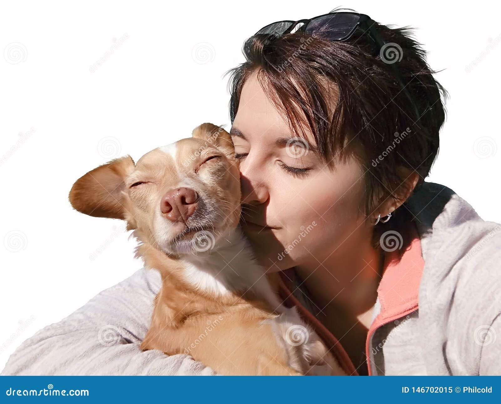 Haustier, das unter dem Sonnenlicht liebt
