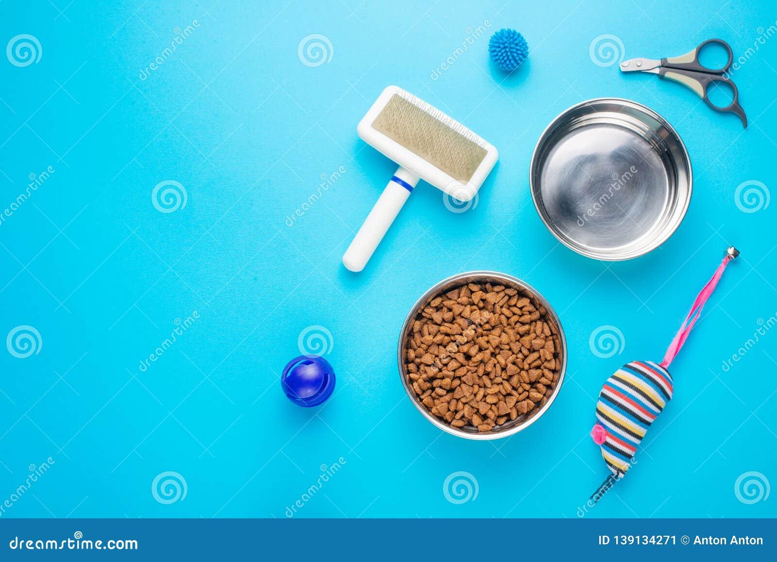 Haustier, Katze, Nahrung und Zusätze der flachen Lage des Katzenlebens, mit Raum für Entwurf, auf blauem Hintergrund