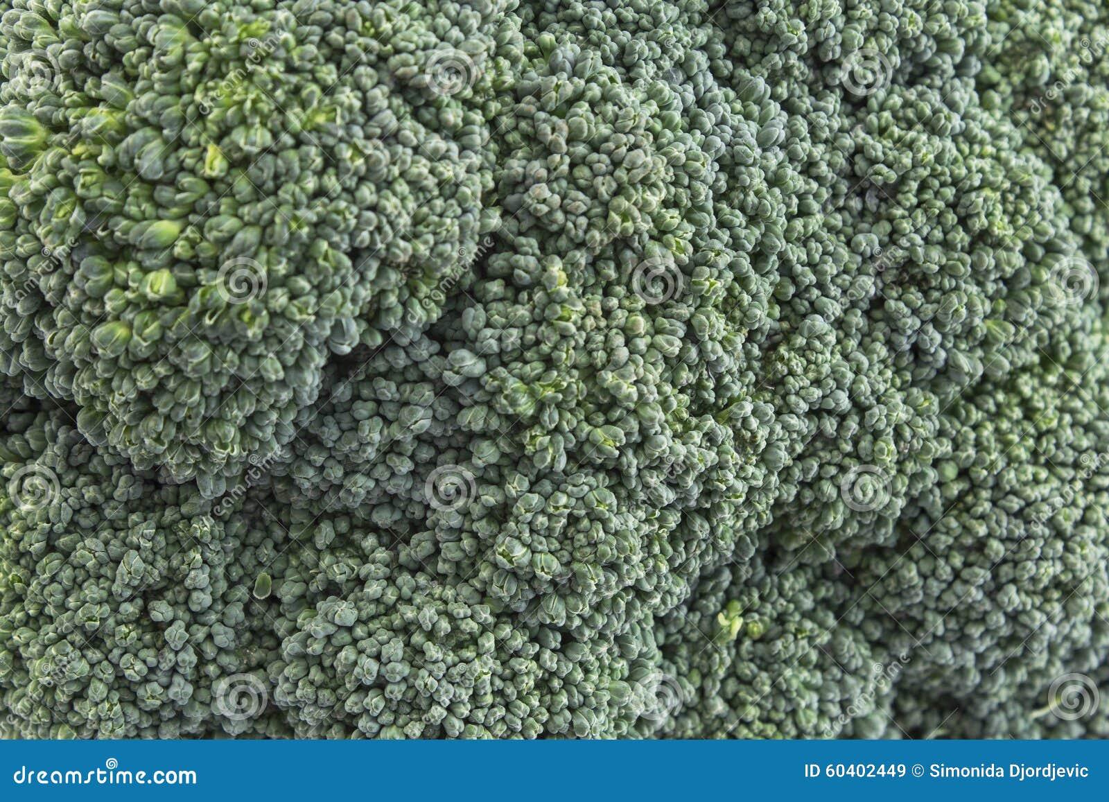 Haut étroit de brocoli comme fond