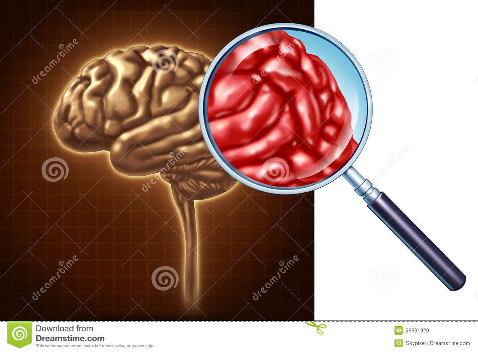 Haut proche de cerveau