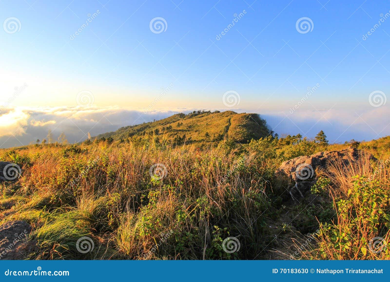 Hav av mist på den Phu Chifa