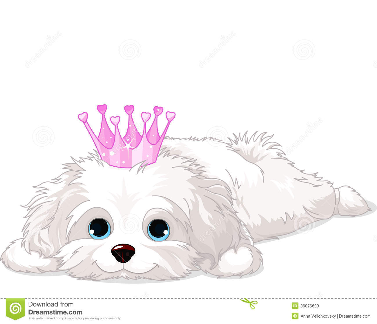 Havanese Puppy with crown stock vector. Illustration of ...