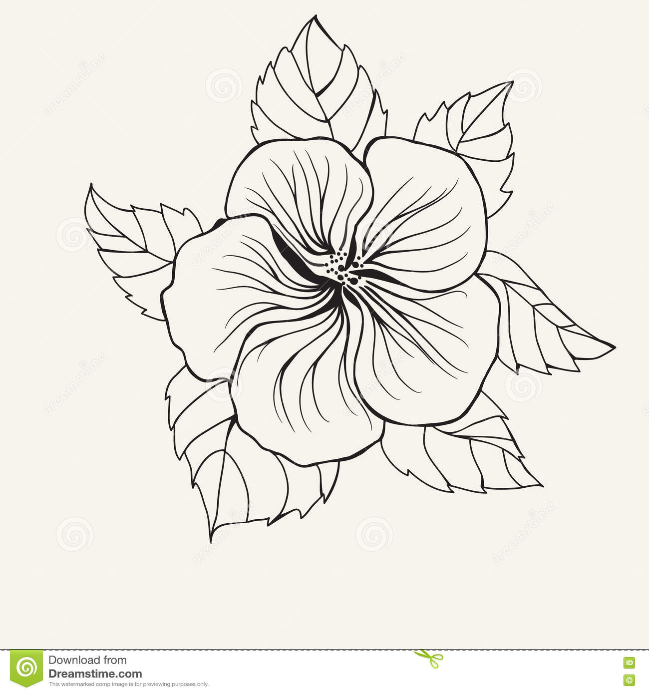 Hawaii Hibiscus Flower, Leaf For Coloring Book Page For Adult Stock ...