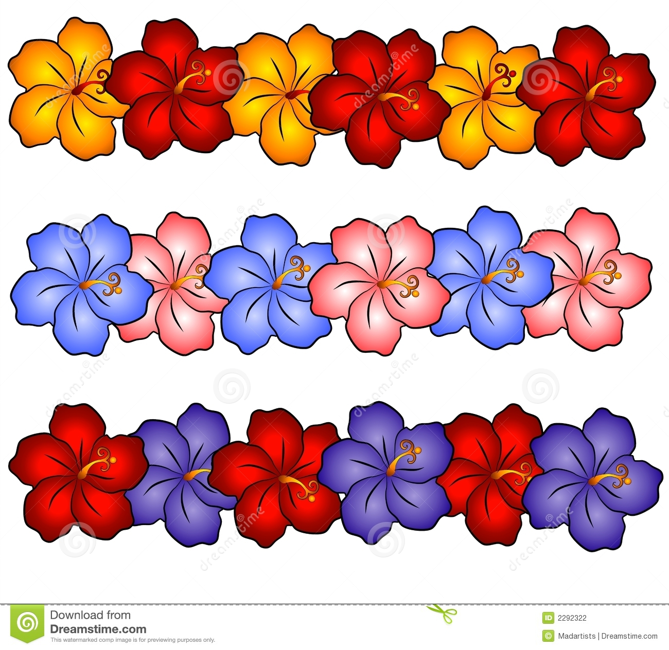Hawaii Hibiscus Flowers 2 Stock Illustration Illustration Of