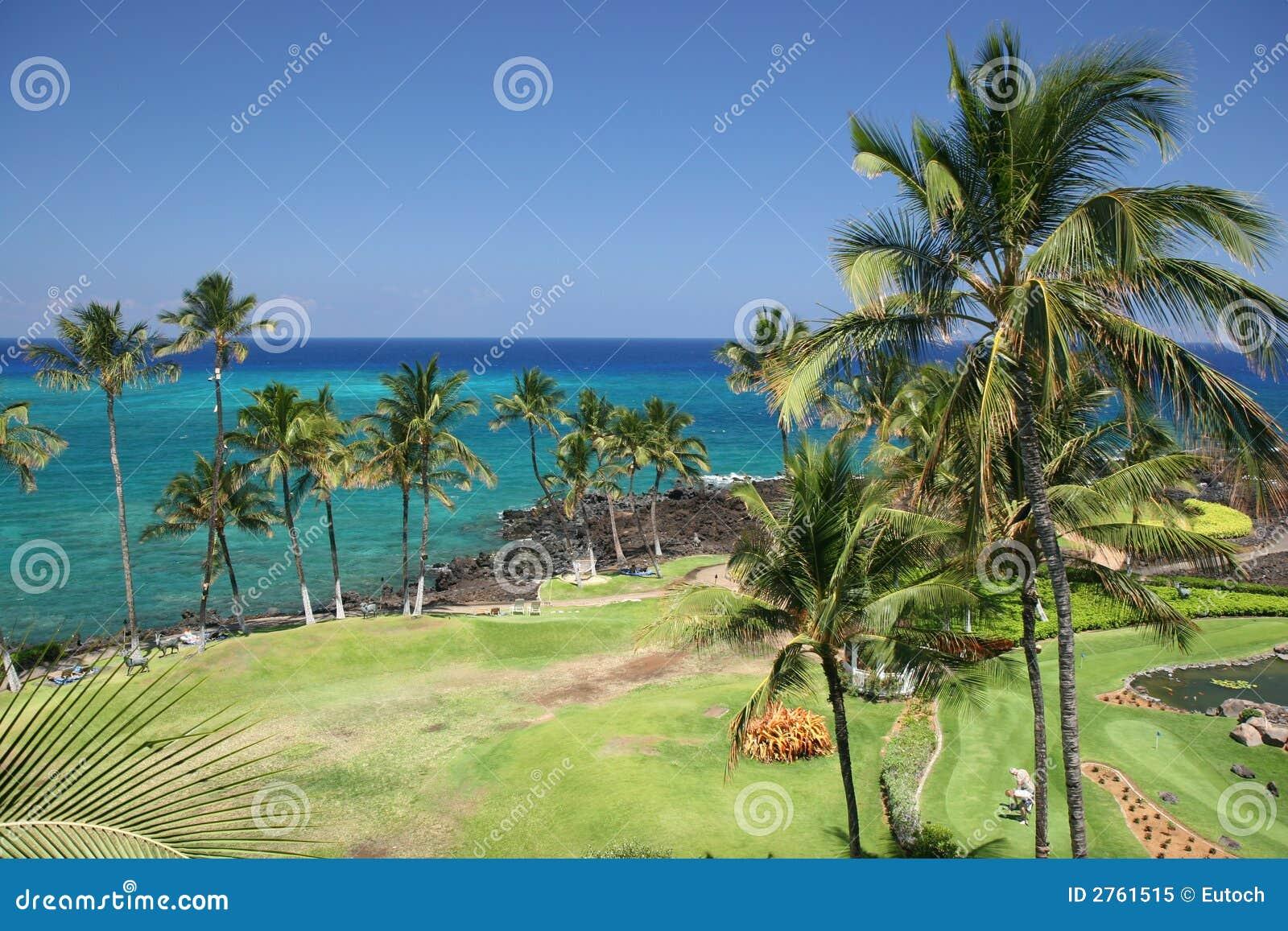 stock image of hawaiian - photo #11