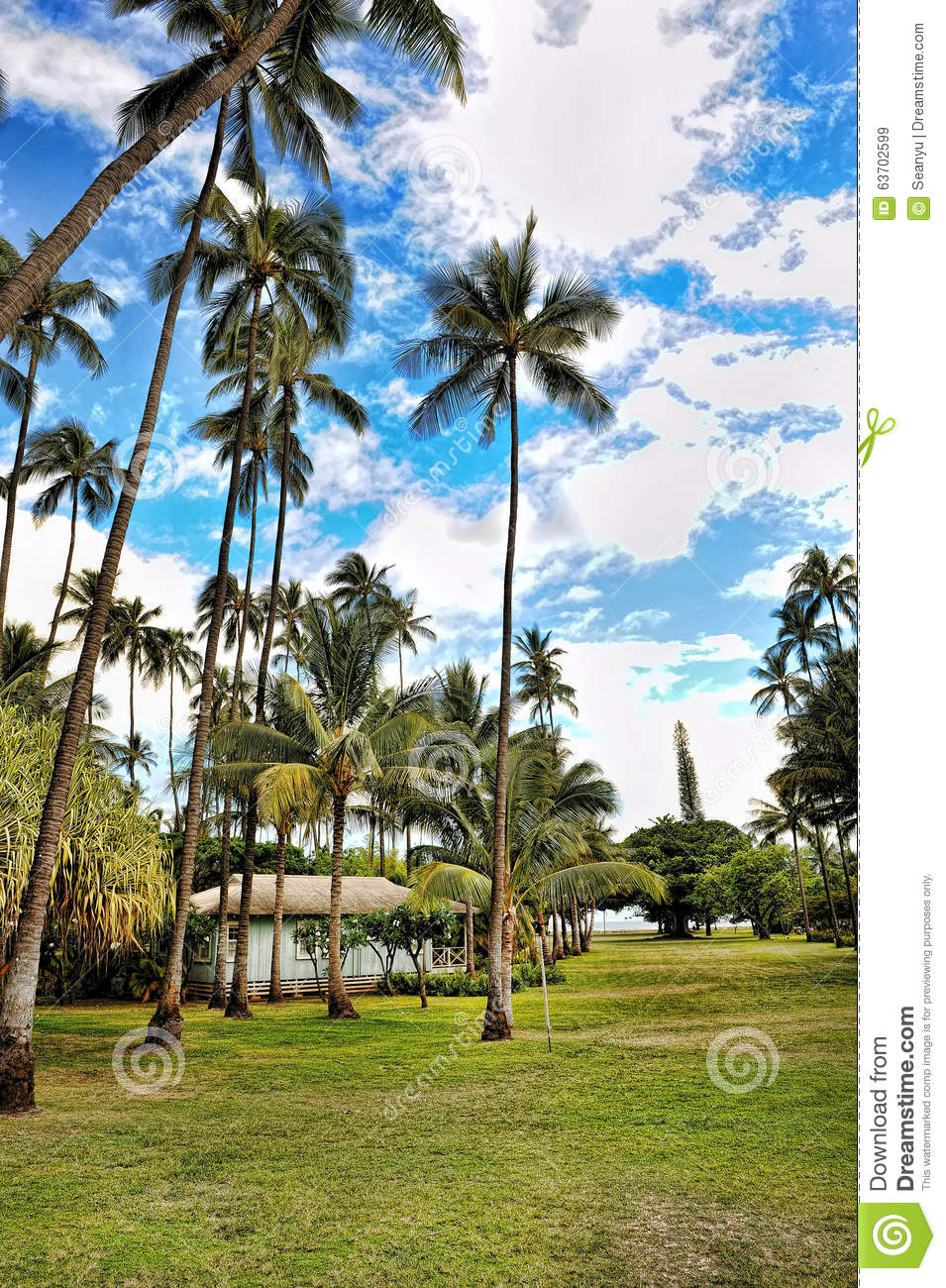 vacation in paradise the hawaiian islands Big island hawaii vacation packages  and discovering which slice of paradise is ideal for you is all part of the fun  all hawaiian islands were formed by a .