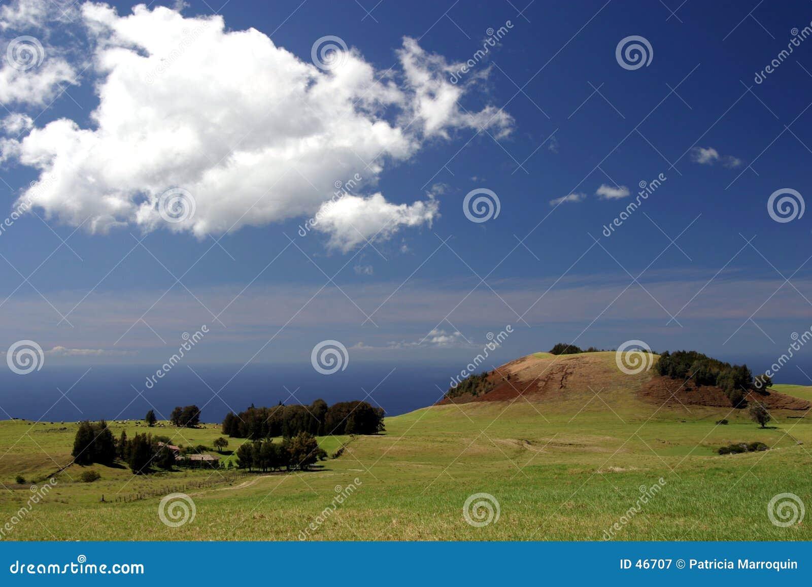 Hawaii sąsiednie ranczo z oceanem