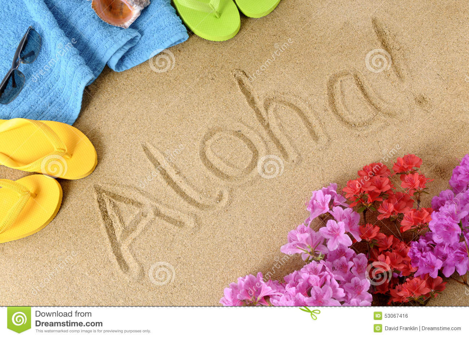 Aloha Hawaii Beach Stock Photo  Image 53067416