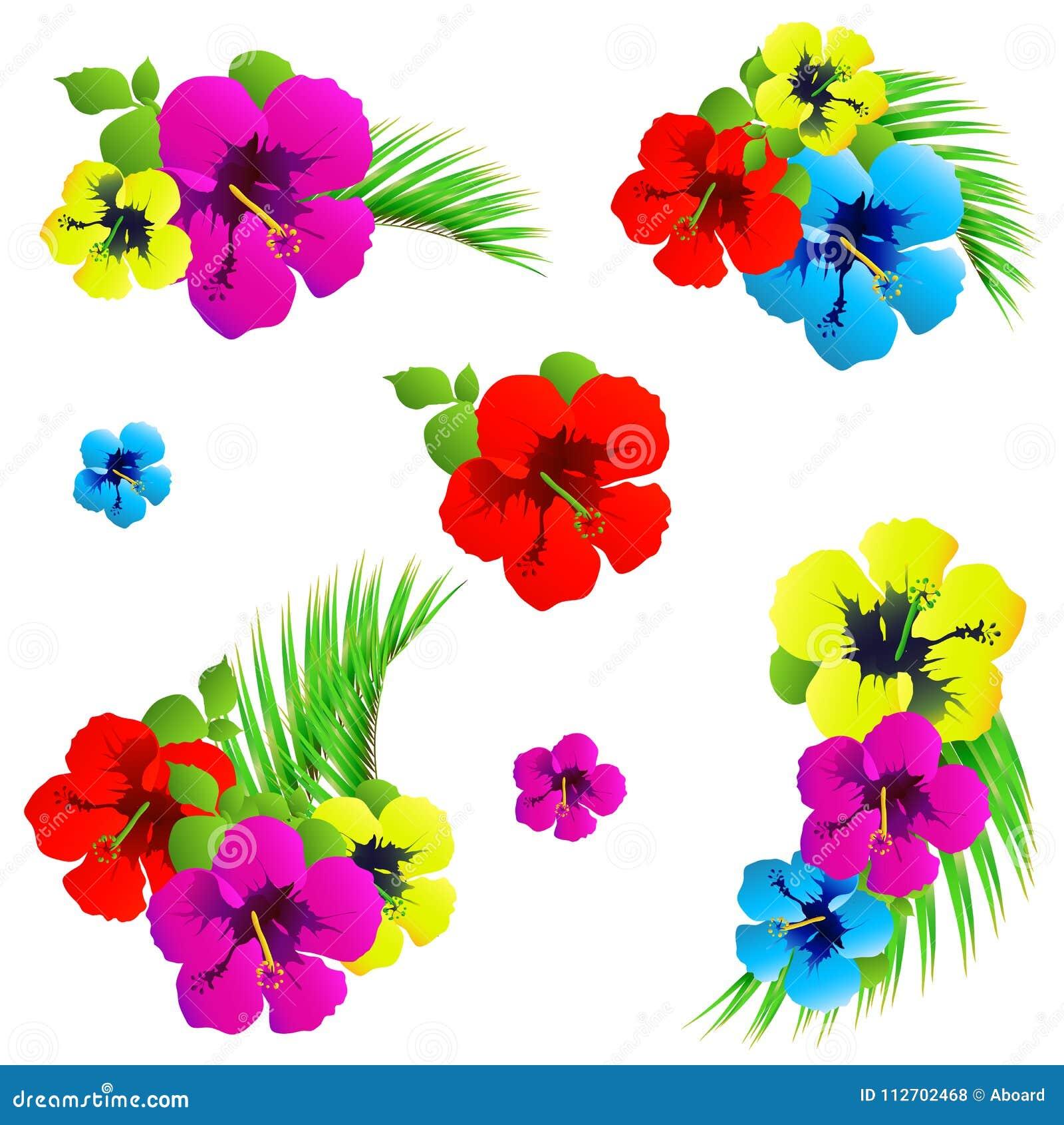 Hawaiian flowers exotic plants isolated on a white stock vector download hawaiian flowers exotic plants isolated on a white stock vector illustration of izmirmasajfo