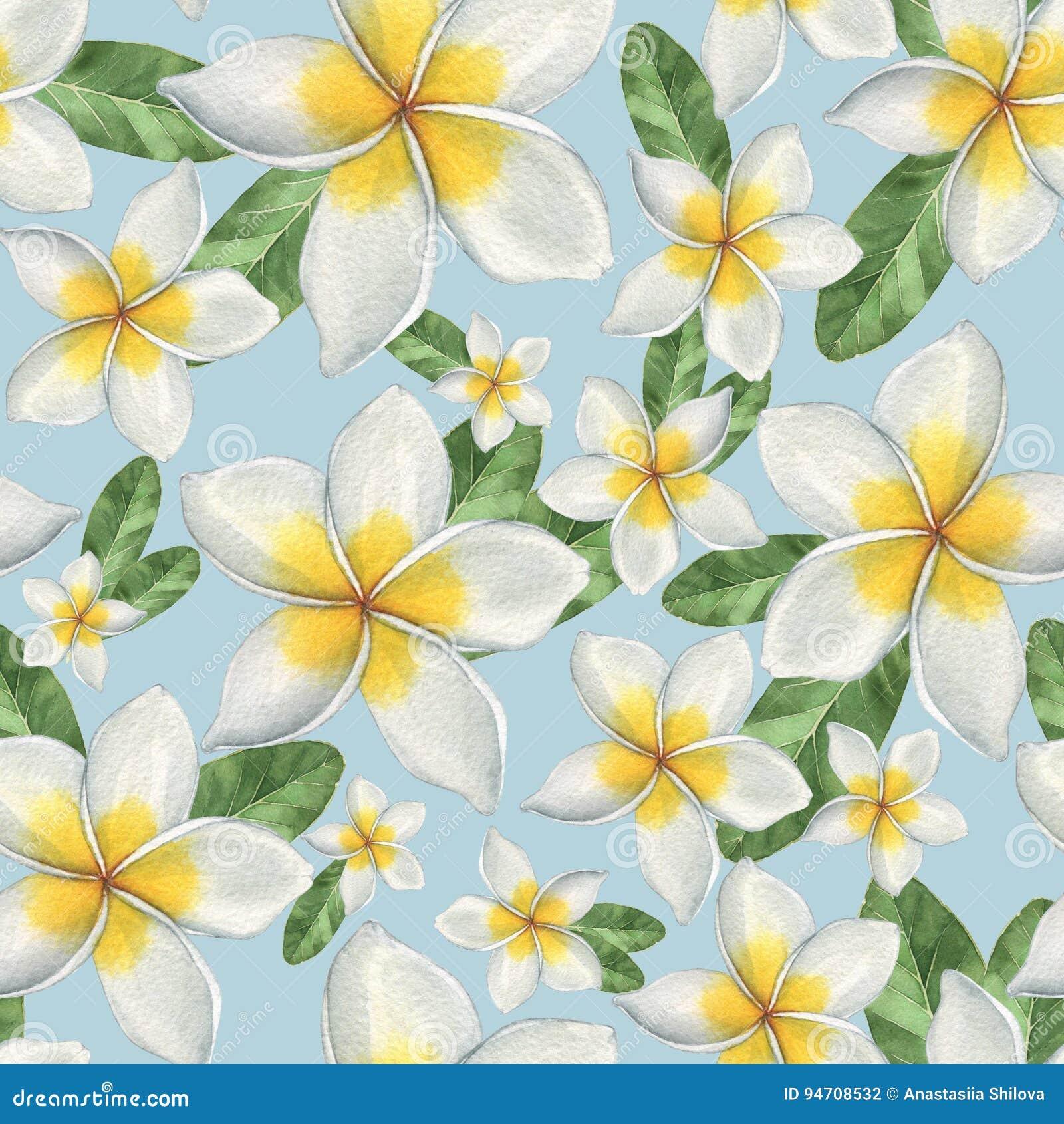 Hawaiian flowers stock illustration illustration of leaf 94708532 download hawaiian flowers stock illustration illustration of leaf 94708532 izmirmasajfo