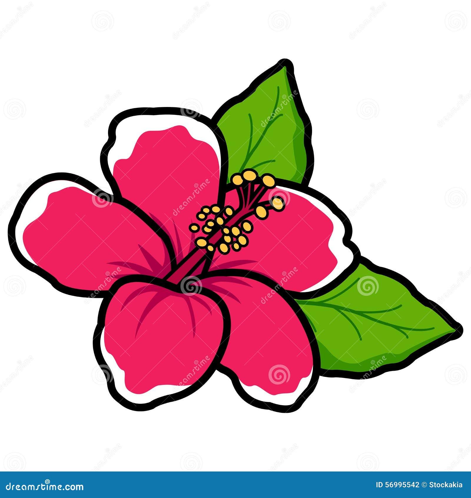 Hawaiian Hibiscus Flower Stock Vector Illustration Of Vector 56995542