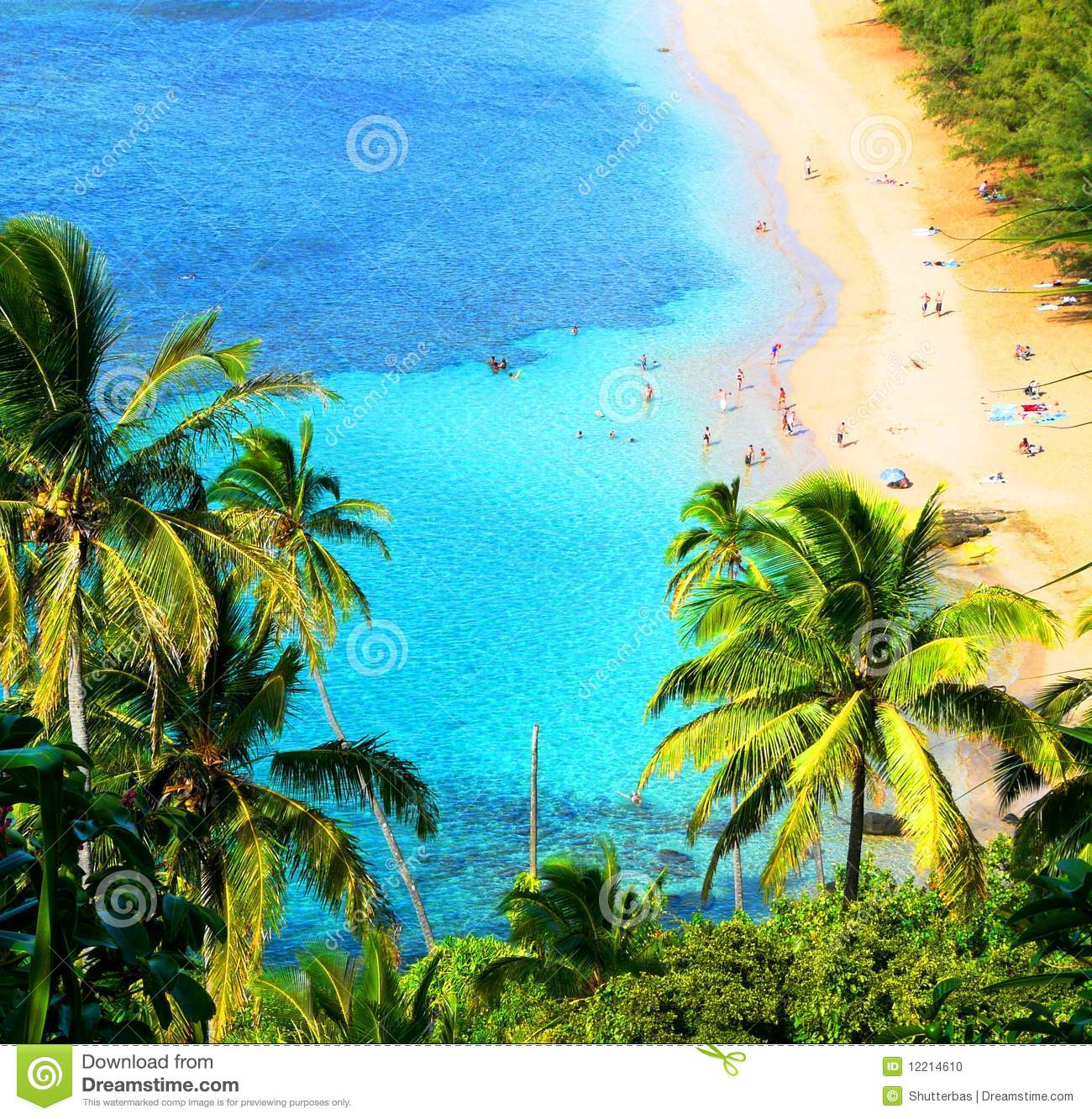 Hawaiian Landscape Stock Photo Image Of Holidays Caribbean