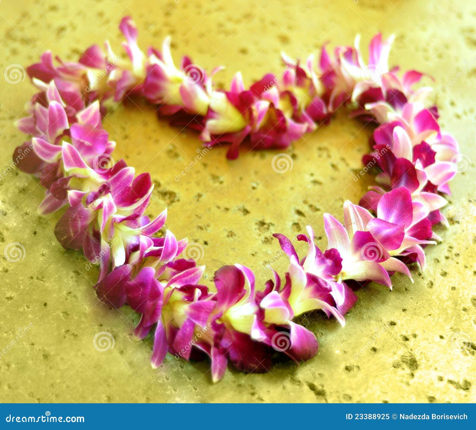 Hawaiian lei stock image image of garland flower hawaiian 4244353 hawaiian lei royalty free stock photo izmirmasajfo Image collections