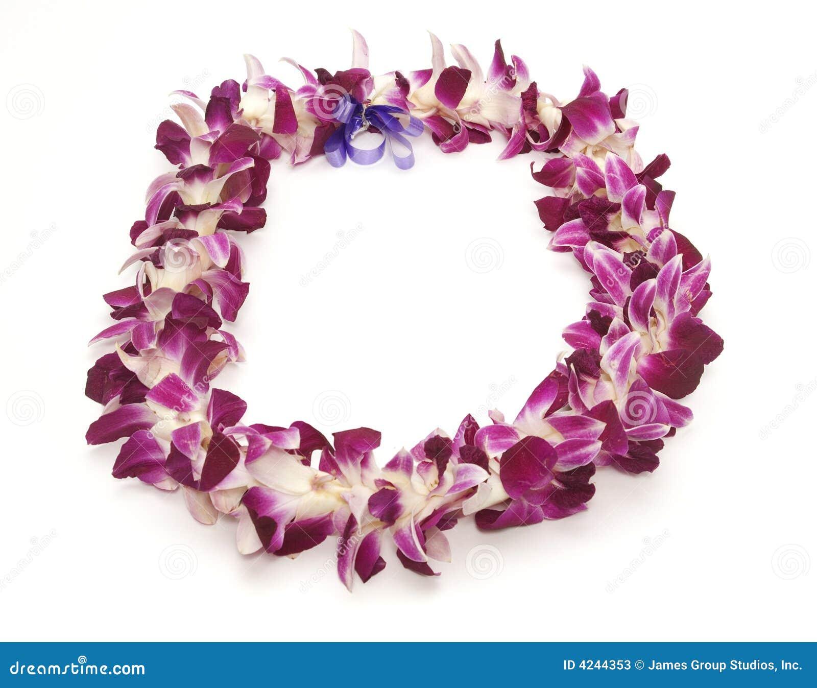 Hawaiian lei stock image image of garland flower hawaiian 4244353 hawaiian lei izmirmasajfo
