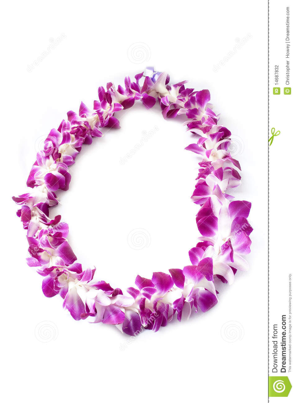 Hawaiian lei made of orchid blooms stock photo image of exotic hawaiian lei made of orchid blooms izmirmasajfo Images