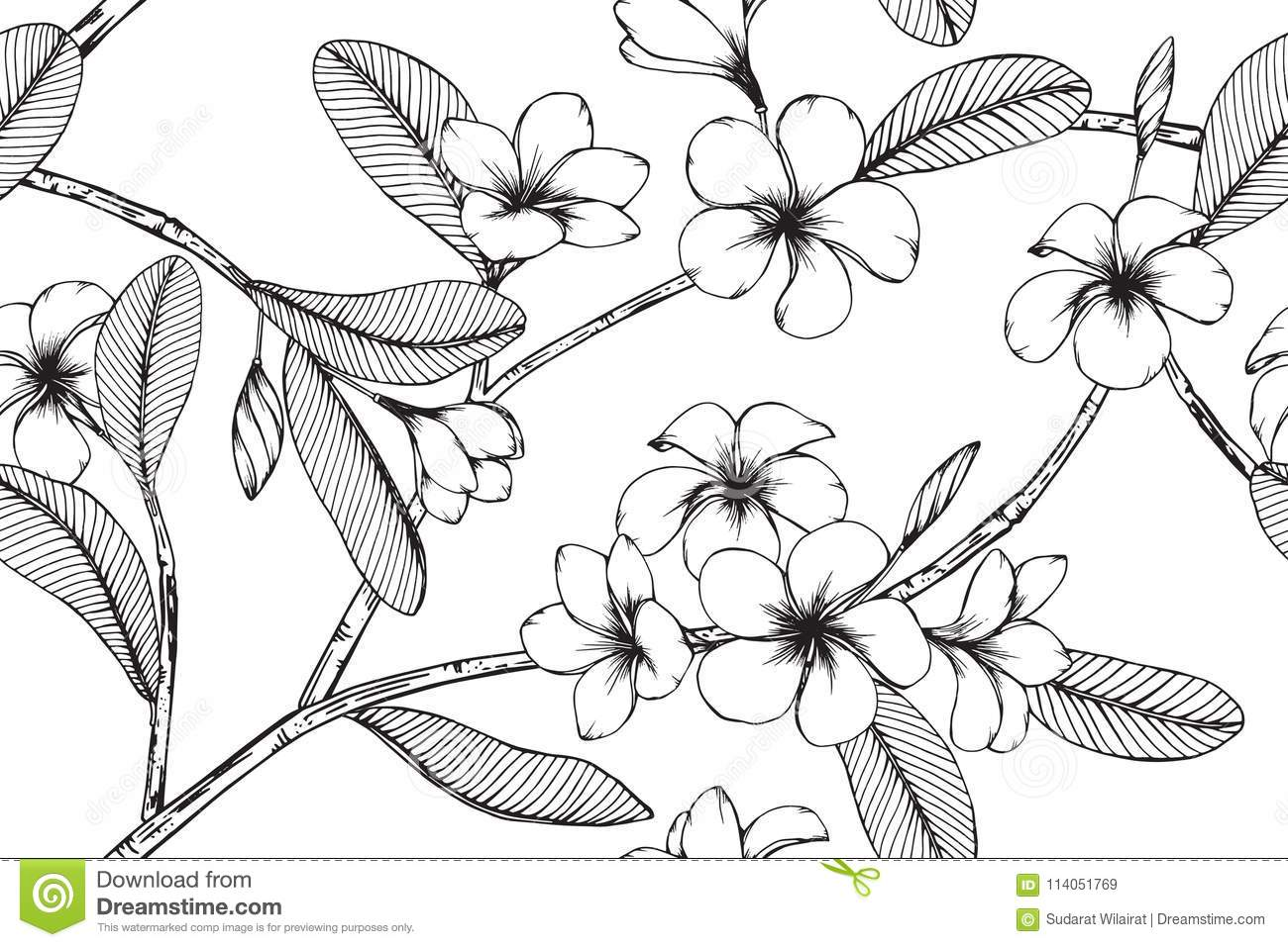 4f903d5bb3e39 Hawaiian pattern seamless background with flower and leaf drawing  illustration.