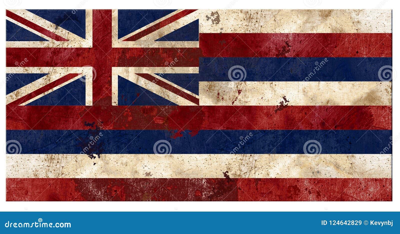 Hawaiian Hawaii Flag Grunge Vintage Metal Rustic Old Antique