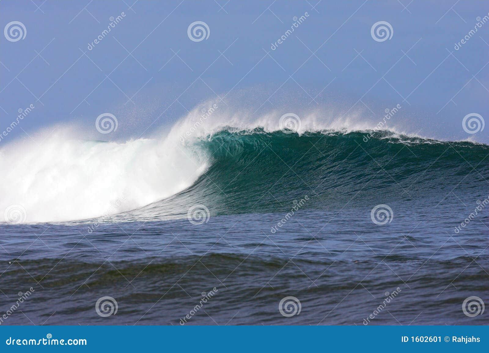 stock image of hawaiian - photo #7
