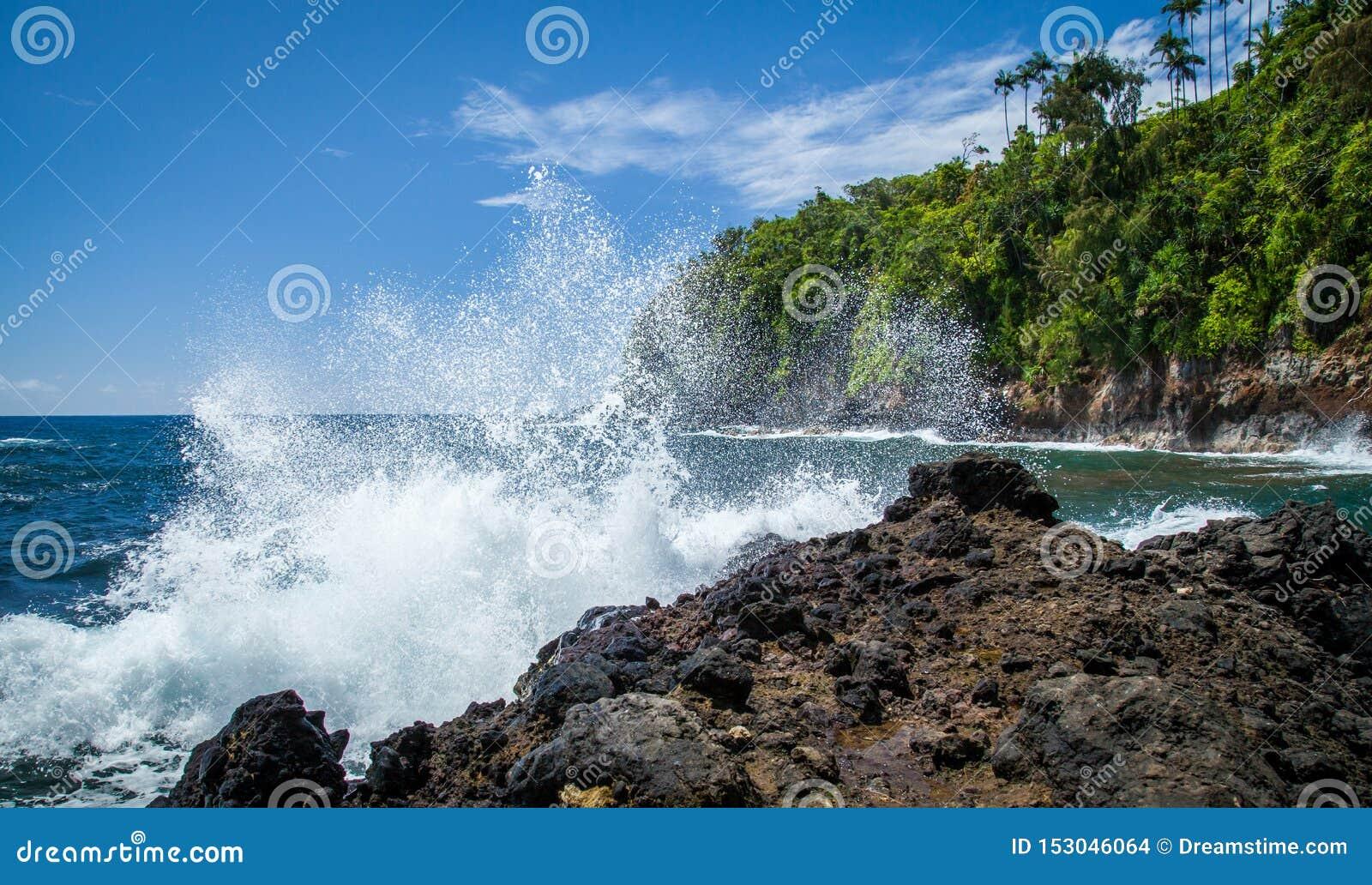 Hawaje Onomea zatoka na Hamakua wybrzeżu na Pięknym dniu z Falowym chełbotaniem