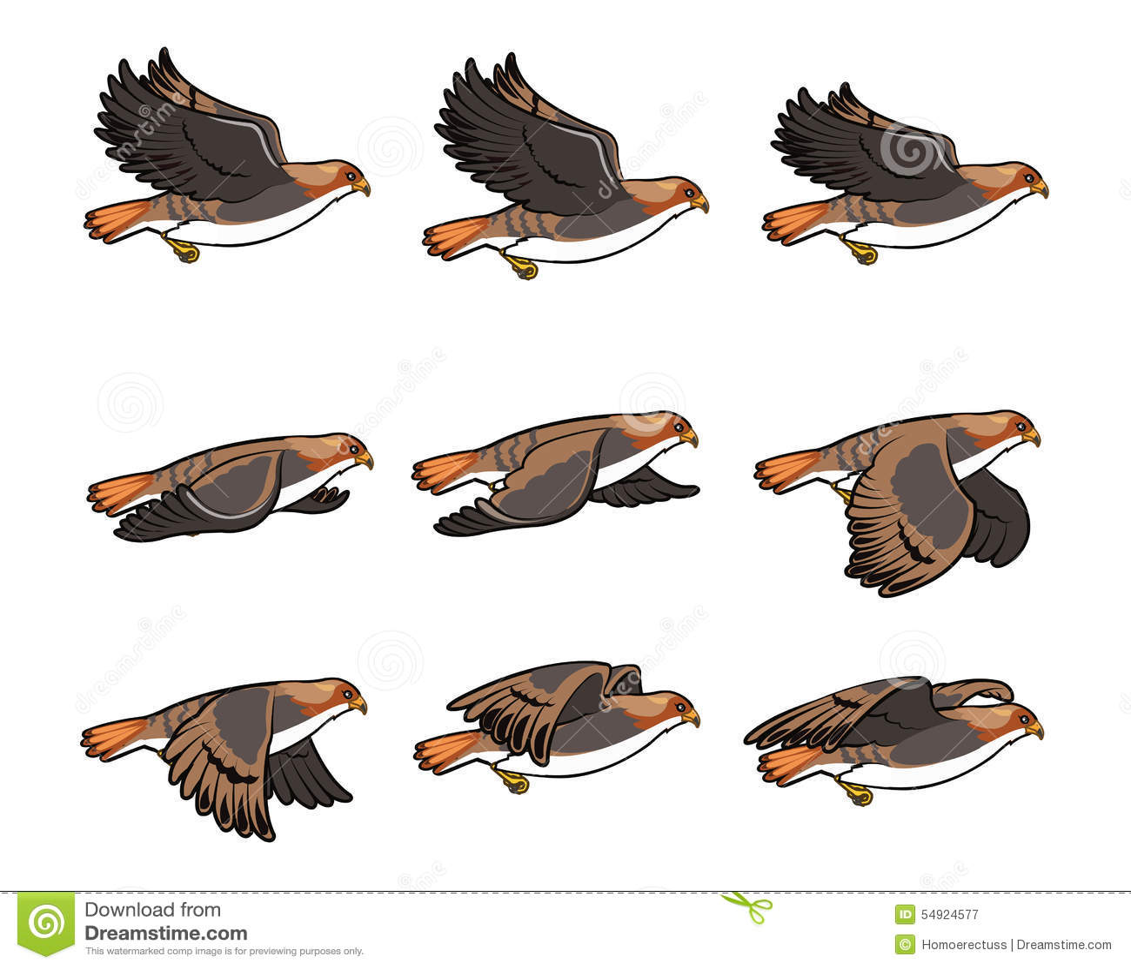 Hawk Flying Sprite stock vector. Illustration of sequence ... Flying Hawk Cartoon