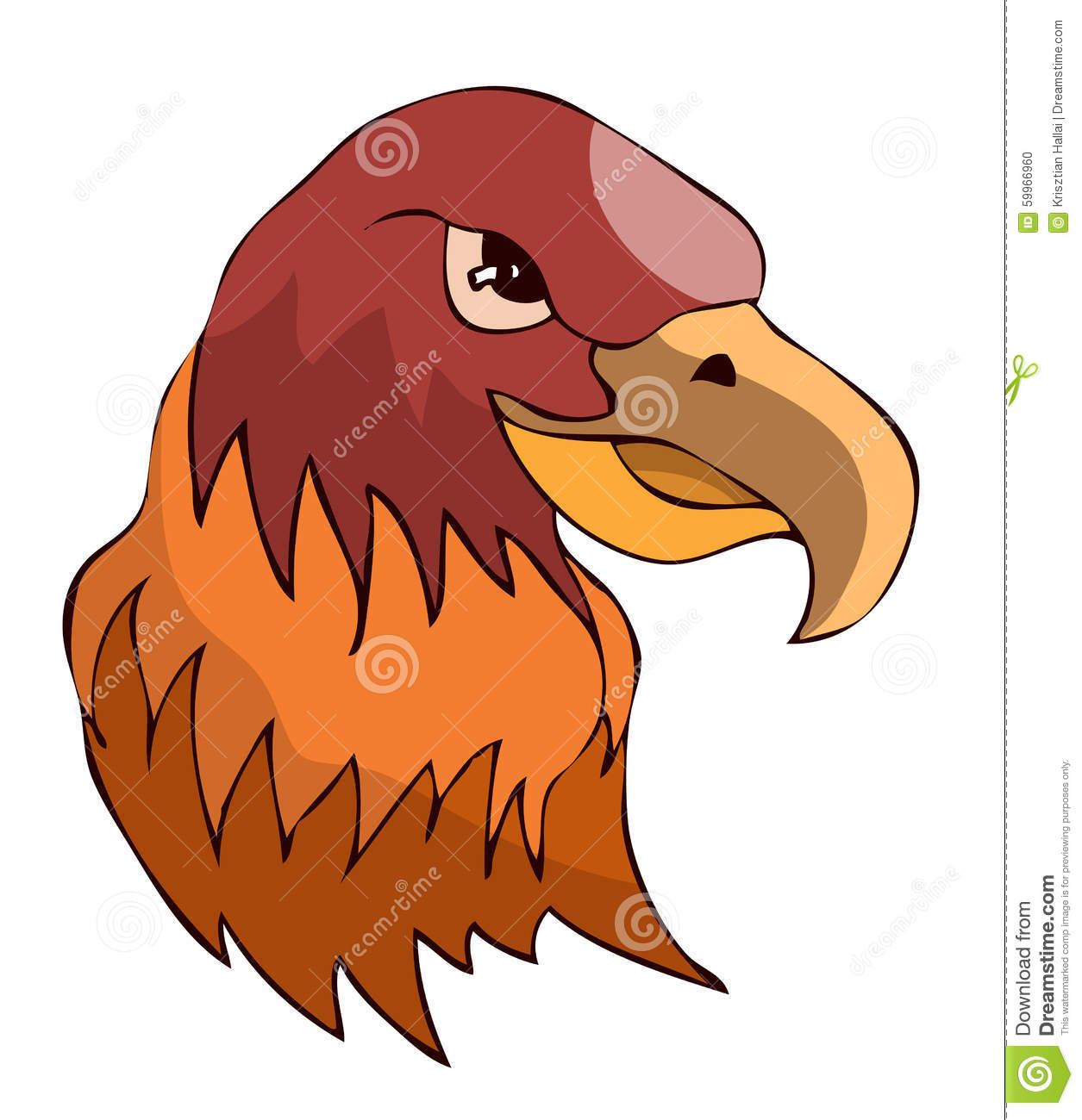 Hawk Head On White Background. Stock Vector - Image: 59966960