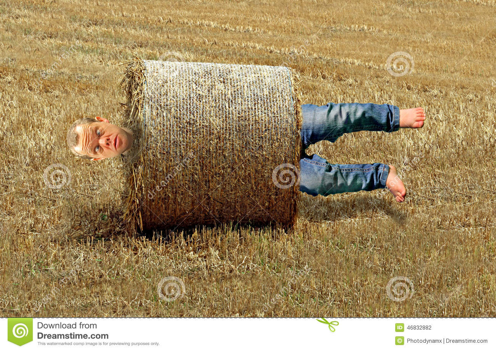 Starting a hay farm? Viability of a hay farm