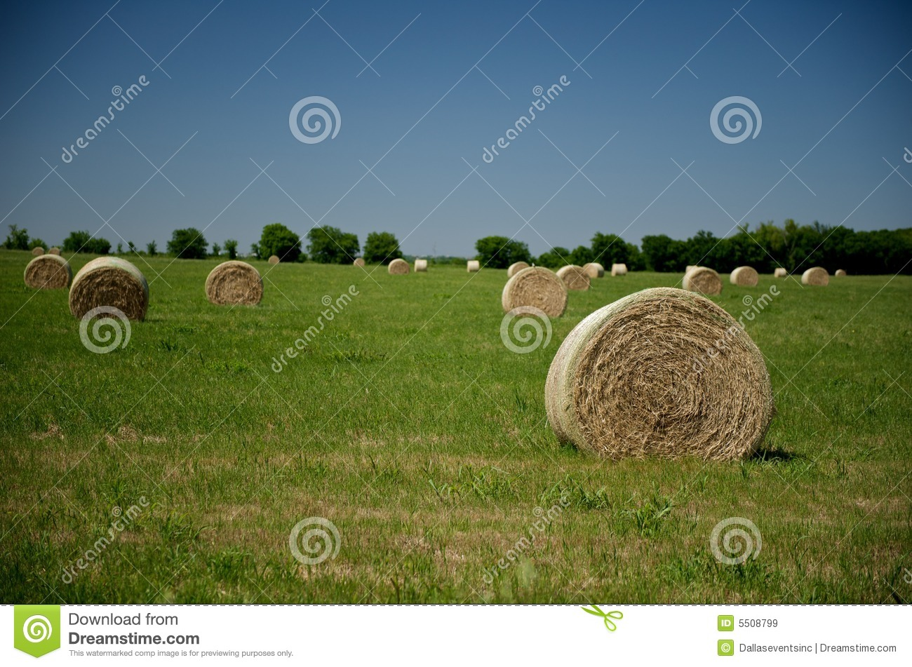 how to prepare a field for hay