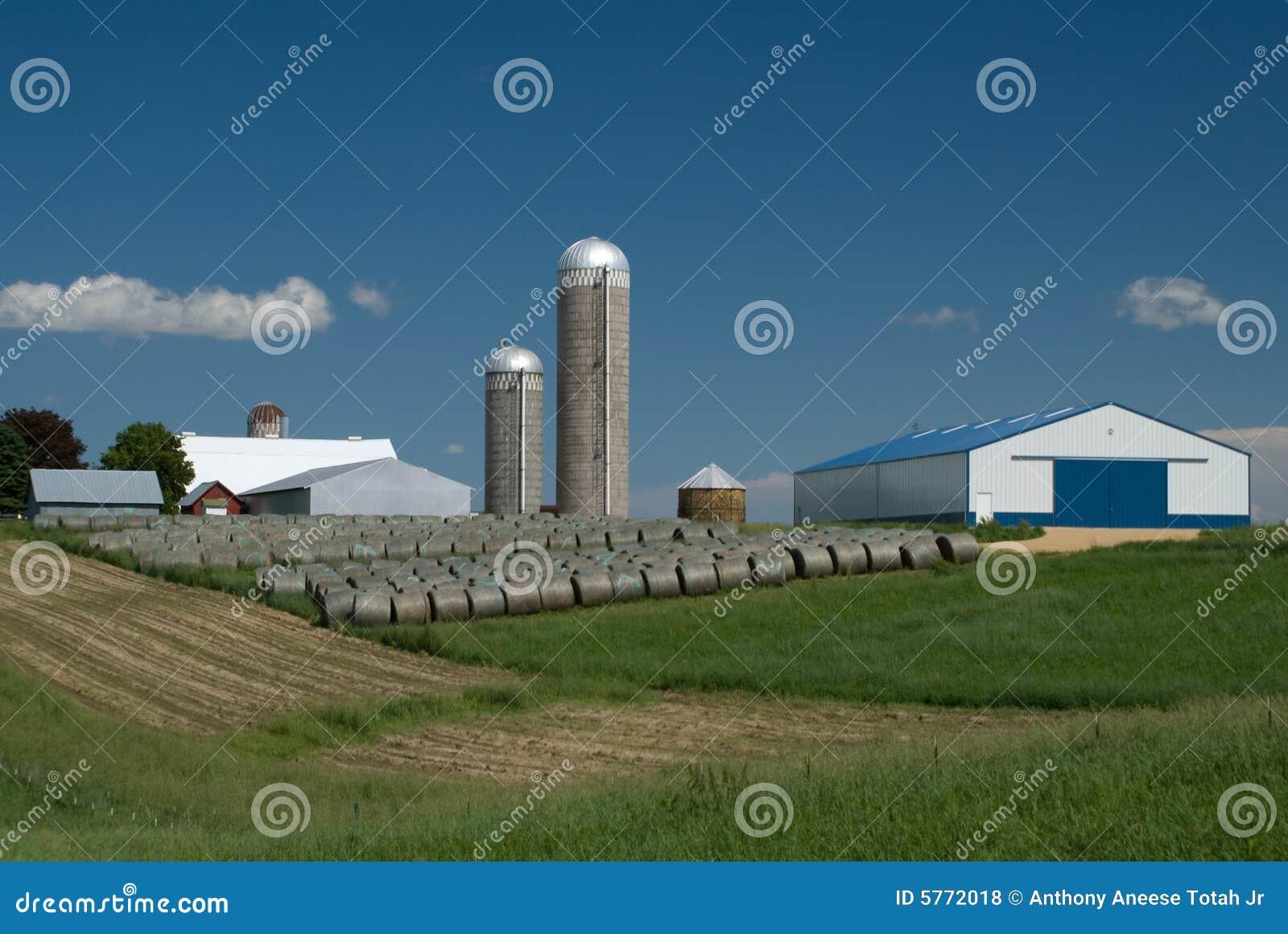Launching a Custom-Hay Business