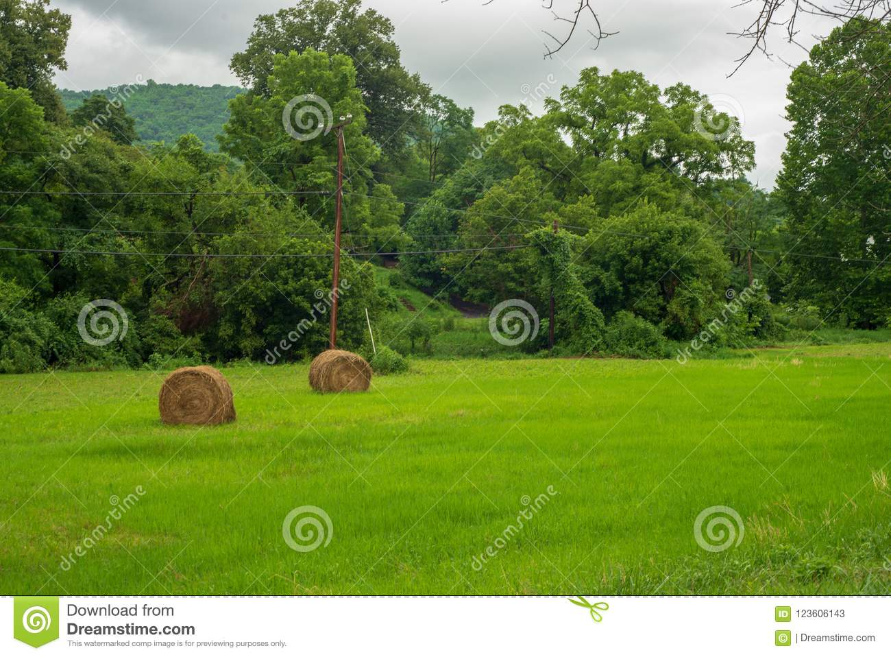 Hay Rolls In A Field In The Mountains Stock Image Image Of