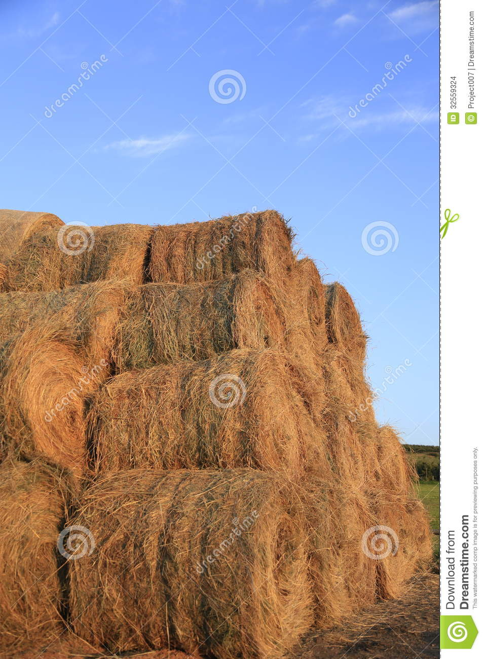 Hay Rolls and beautiful blue summer sky