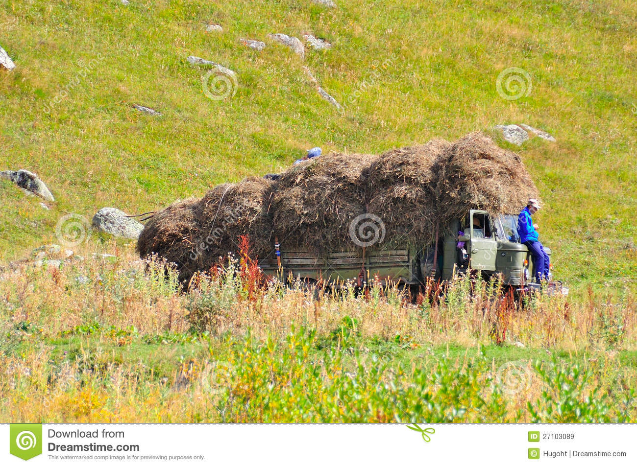 Hay Stacked on Truck