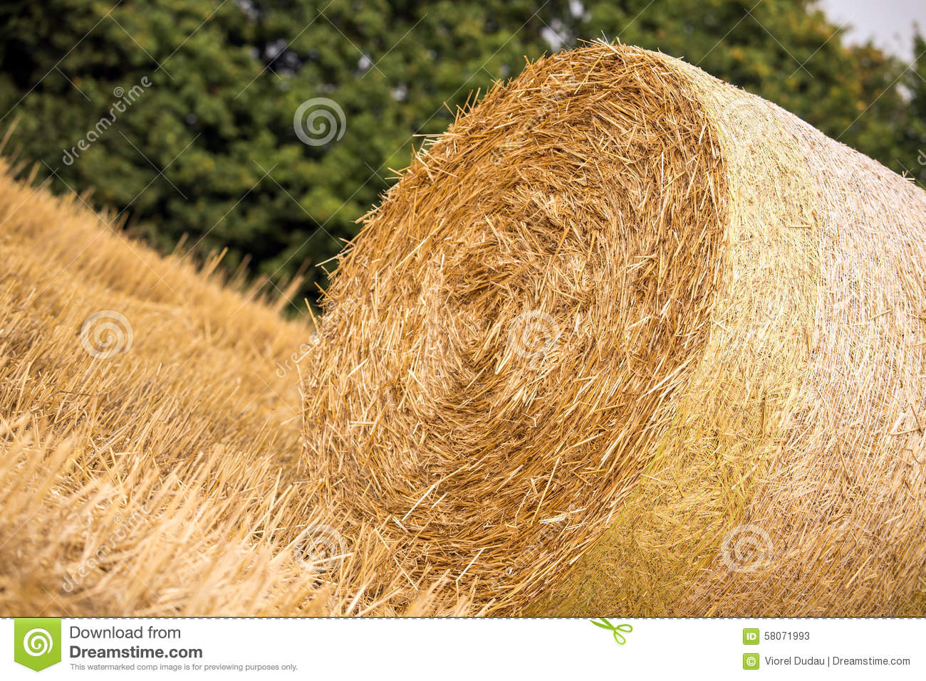 how to make a haystack