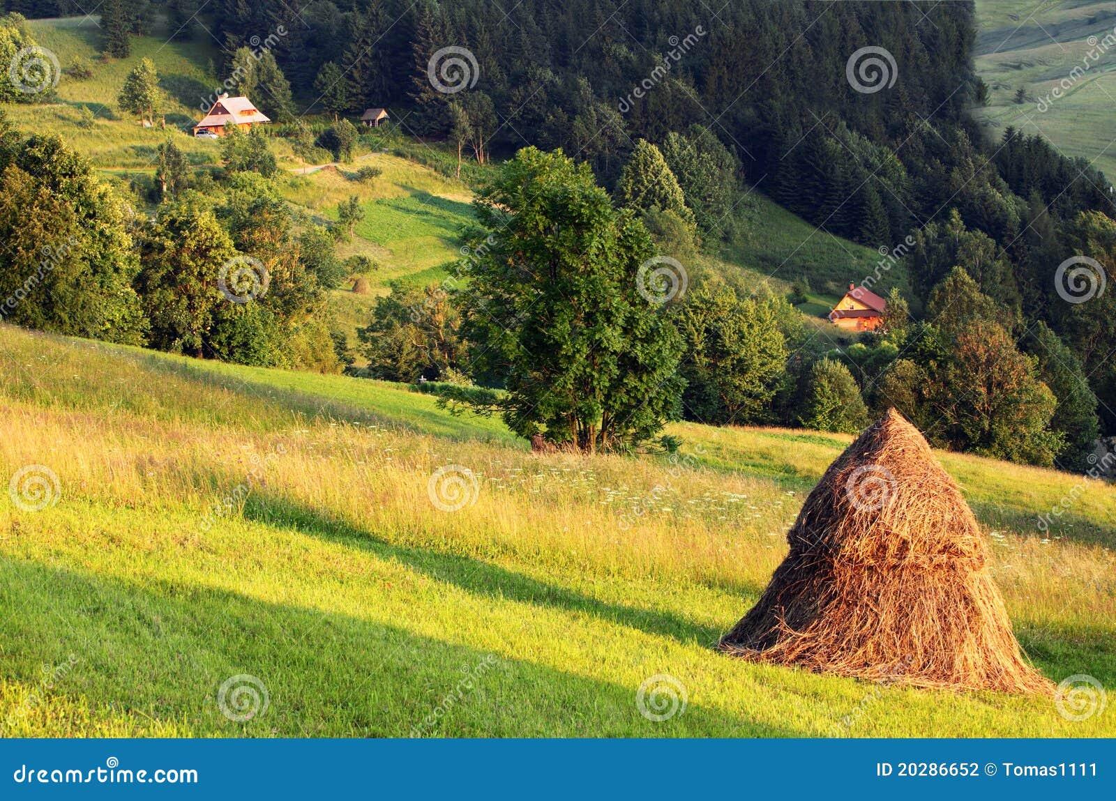Haystack en naturaleza