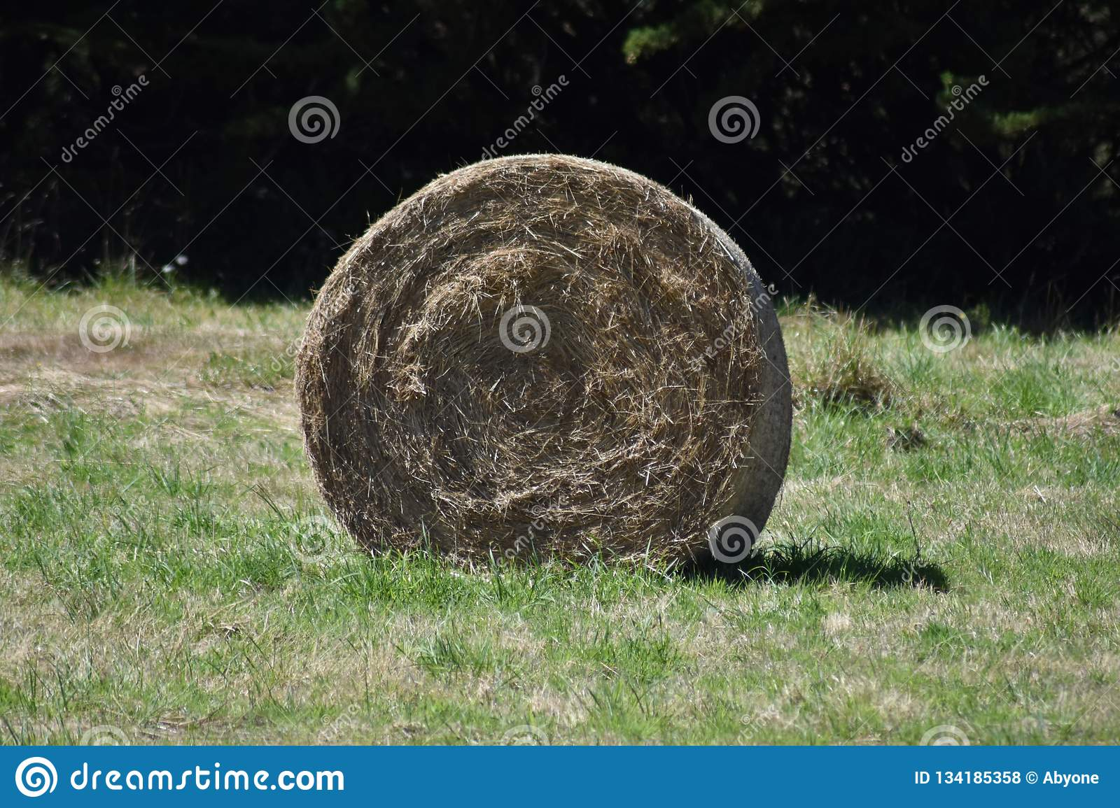 Haystack in a field in Brittany, France.