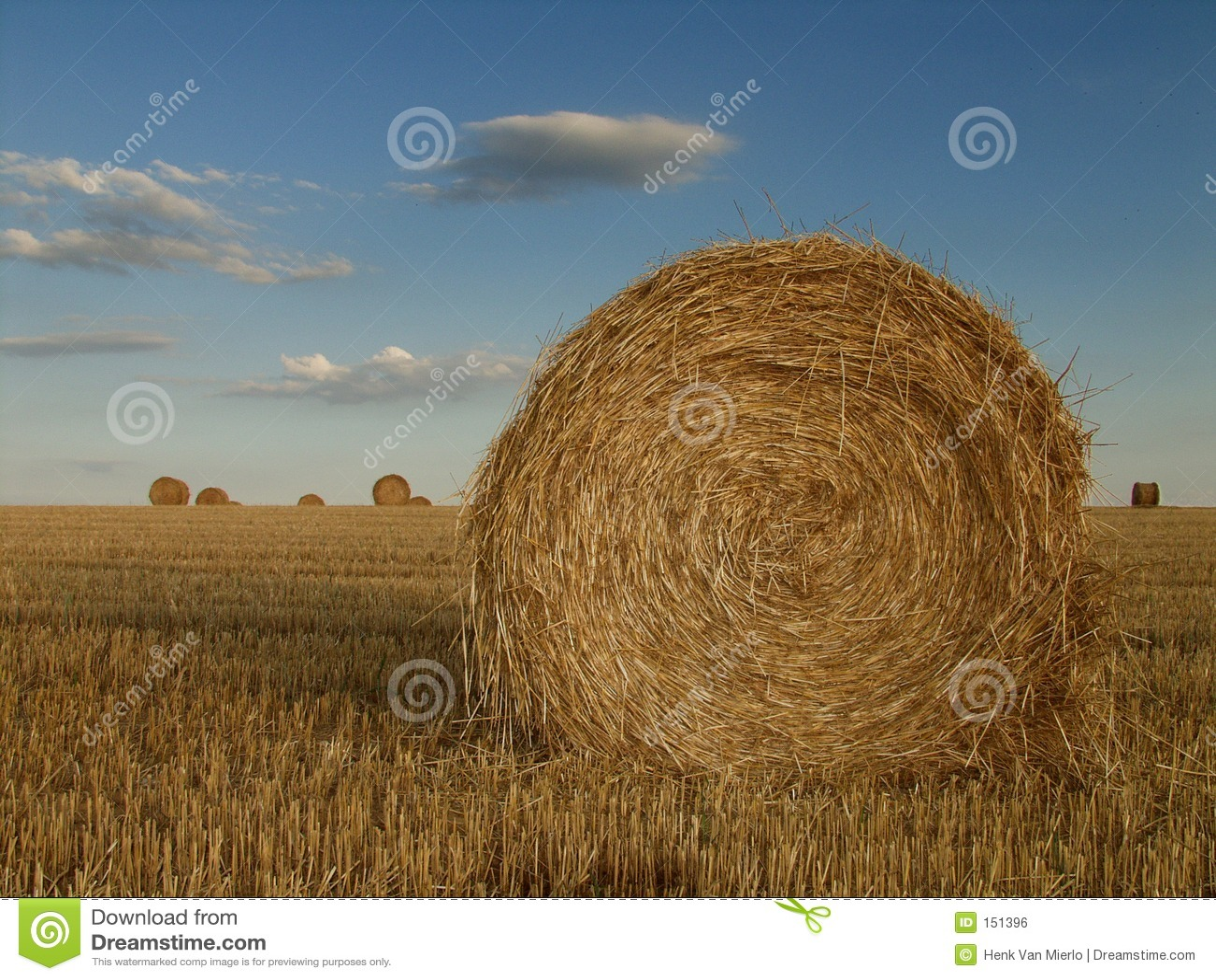 Haystack france