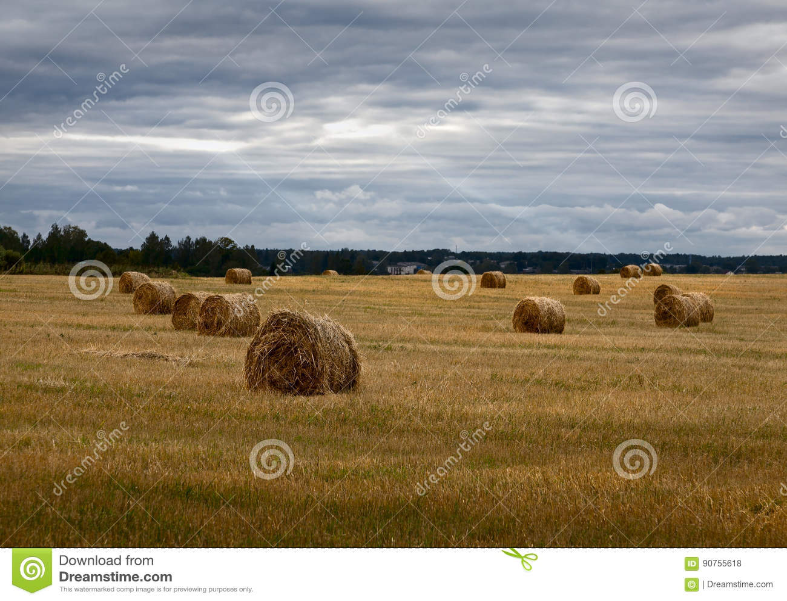 Haystacks Ρωσικό πεδίο συννεφιασμένος