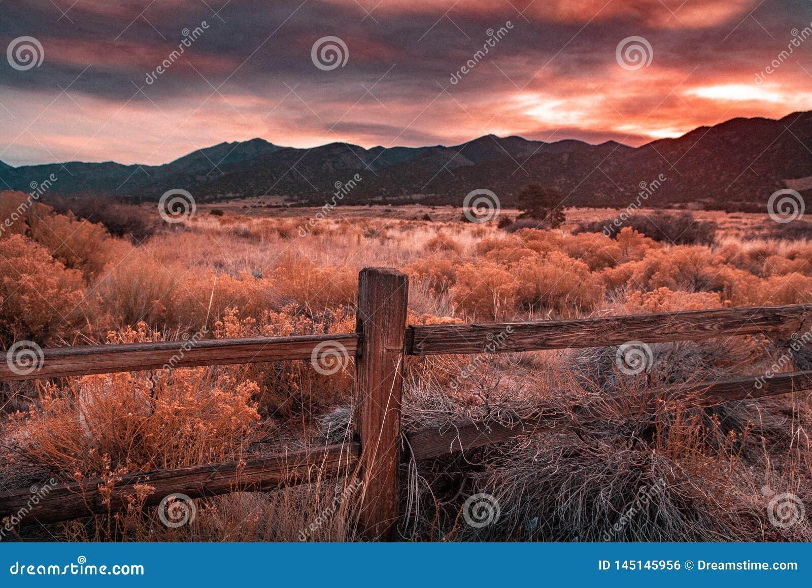 Haze Sunset Overlooking anaranjado un prado
