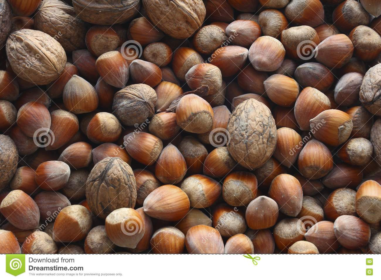 Hazel nuts and nuts