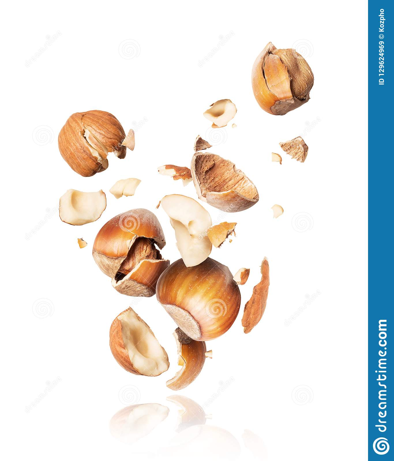 Hazelnuts crushed in the air close-up, isolated on white