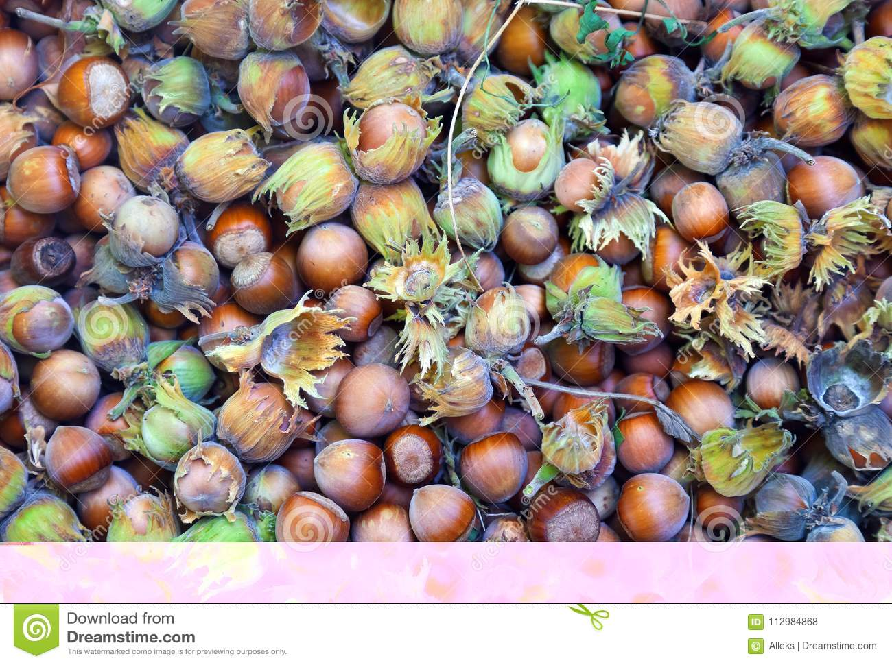 Hazelnuts.Just from the forest. Food background