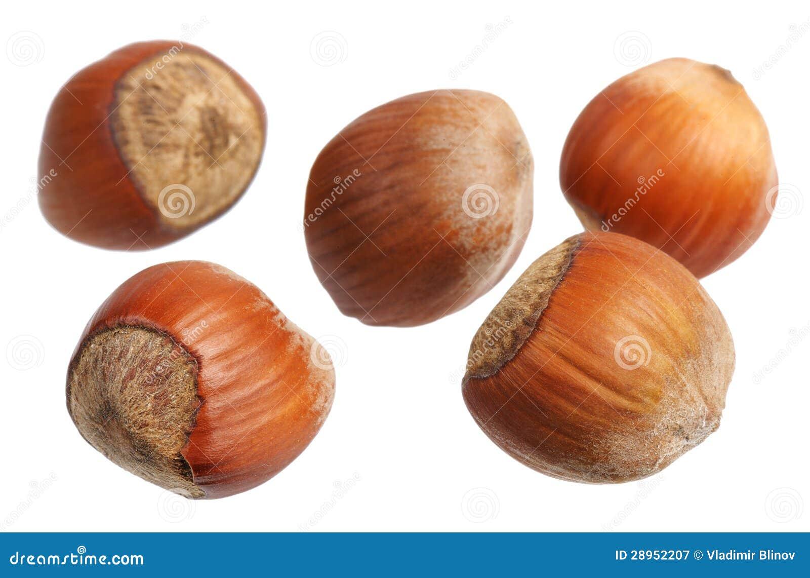 Hazelnuts, odizolowywający