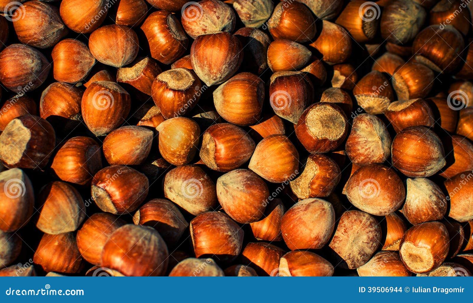 Hazelnuts Texture