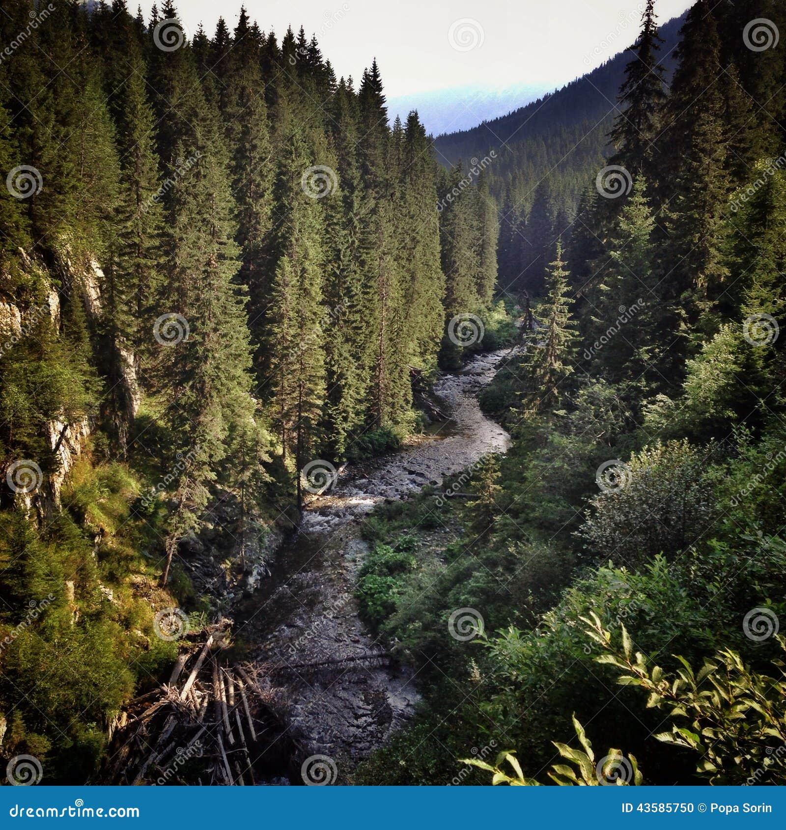 3 hdr górskiej zdjęć panoramy rzeka pionowe