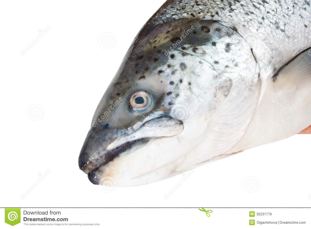 how to clean salmon head